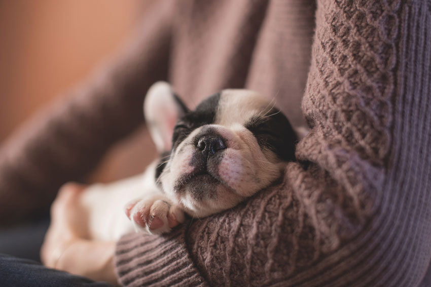 Caffeine Naps – How to Power Up and Maximize Productivity