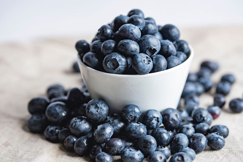 blueberry benefits
